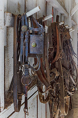 Photograph - Buffalo Bills Tack Room by Susan Rissi Tregoning