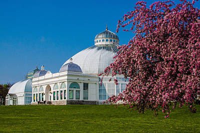 Photograph - Buffalo Botanical Gardens North Lawns by Don Nieman