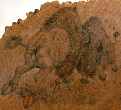 Buffalo Butt Art Print by Jerrywayne Anderson