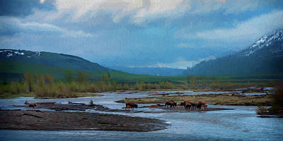 Photograph - Buffalo Crossing The Lamar River Yellowstone_photo Painting_grk7153_05242018 by Greg Kluempers