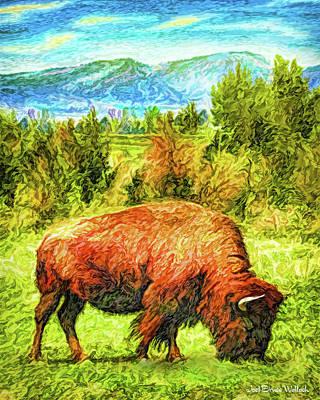 Digital Art - Buffalo Grazing Under Blue Sky - Boulder County Colorado by Joel Bruce Wallach