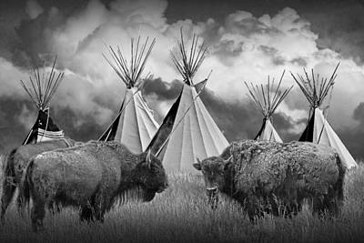 Randall Nyhof Royalty Free Images - Buffalo Herd among Teepees of the Blackfoot Tribe Royalty-Free Image by Randall Nyhof