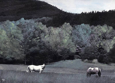 Photograph - Buffalo Horse Mindscape by Wayne King