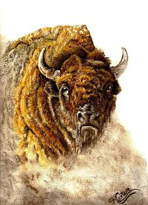 Buffalo Art Print by Karen Cortese