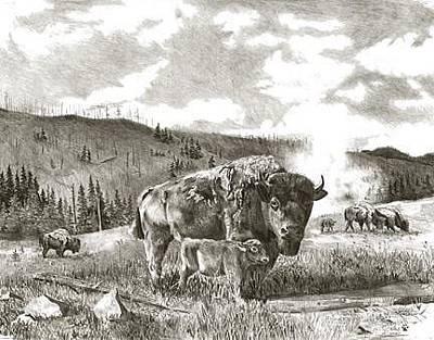 Yellowstone Drawing - Buffalo Of The Yellowstone by Bryan Bramblett