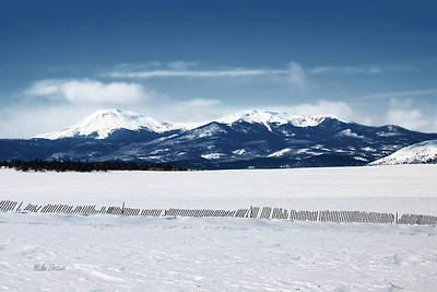 Photograph - Buffalo Peaks by Mike Braun