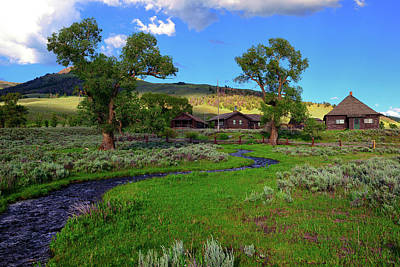 Photograph - Buffalo Ranch by Greg Norrell