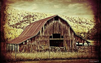 Photograph - Buffalo River Valley Barn by Wesley Nesbitt