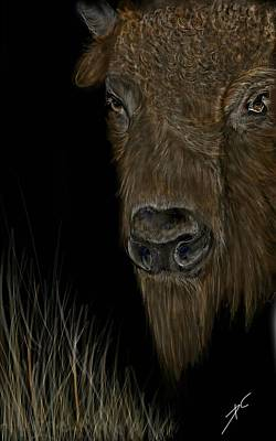 Digital Art - Buffalo Roam by Darren Cannell