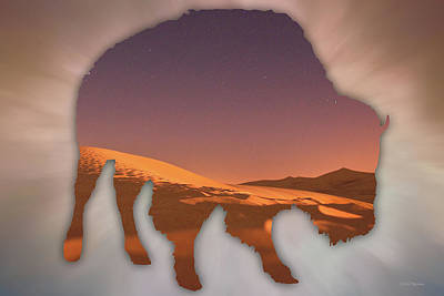 Digital Art - Buffalo Silhouette by Ericamaxine Price