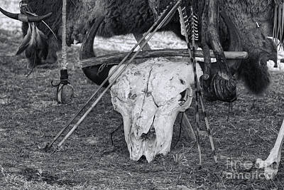 Photograph - Buffalo Skull by Olga Hamilton