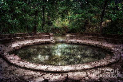 Photograph - Buffalo Springs by Tamyra Ayles
