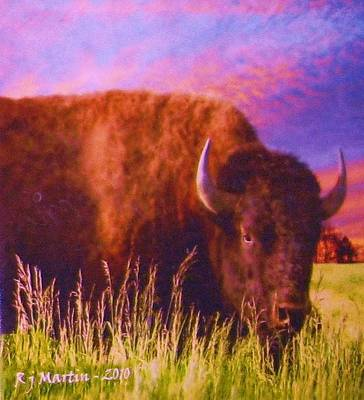 Buffalo Sunset Art Print