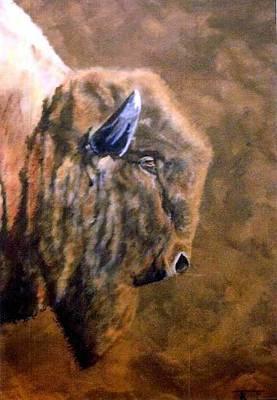Pelts Painting - Buffalo by Travis Kelley