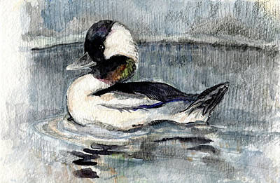 Painting - Bufflehead by Abby McBride