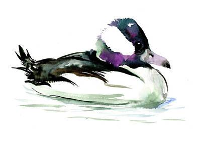 Painting - Bufflehead Duck Illustration by Suren Nersisyan
