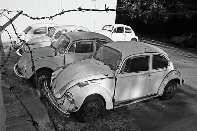 Photograph - Bug Graveyard 3 by Joseph C Hinson Photography