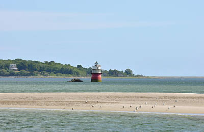 Photograph - Bug Light by Joanne Brown