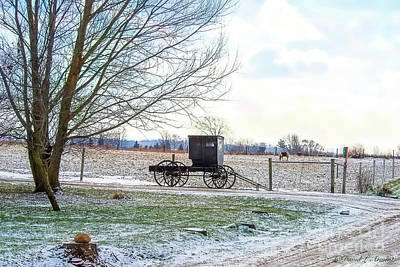 Photograph - Buggy Alone In Winter by David Arment