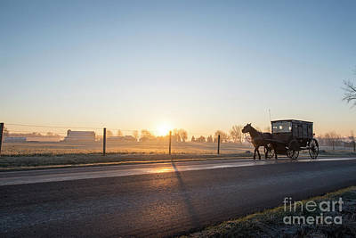 Photograph - Buggy At Dawn by David Arment