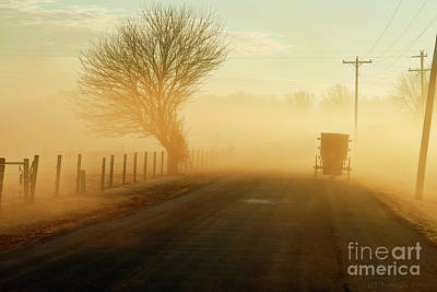 Amish Photograph - Buggy Passes Tree On Foggy Morning by David Arment
