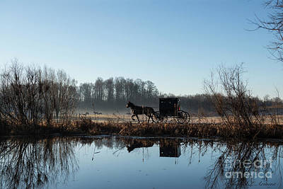 Photograph - Buggy Reflected In Pond by David Arment