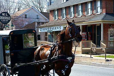 Photograph - Buggy Whooshes Past Zimmerman's by Tana Reiff