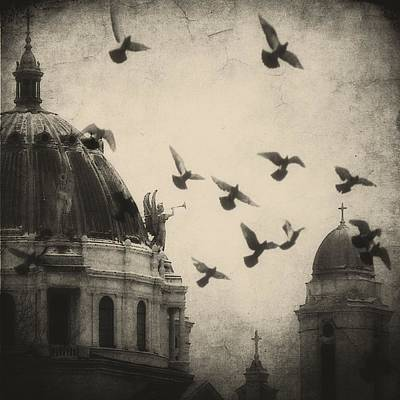 Gothicrow Photograph - Bugle Blowing Church Angel And Birds by Gothicrow Images