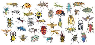 Painting - Bugs by Marie Stone Van Vuuren