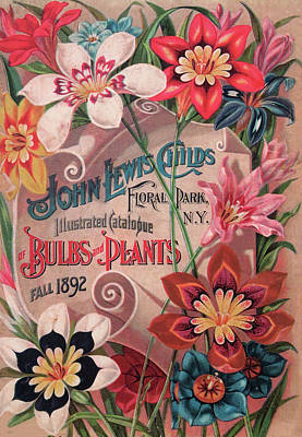 Photograph - Bulbs And Plants Catalog Cover by Dave Mills