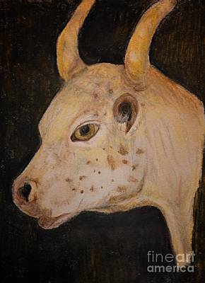 Pastel - Bull Calf - Pastels by Maria Urso