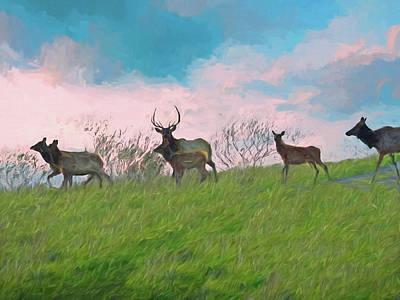Digital Art - Bull Elk And His Herd by Rusty R Smith