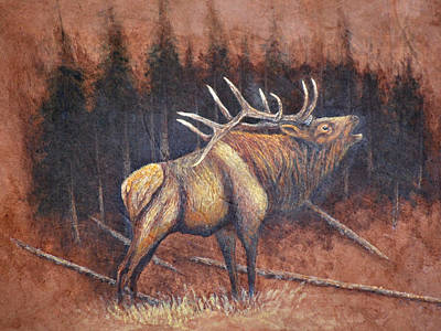 Painting - Bull Elk by Dusty Bahnson