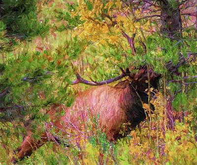 Painting - Bull Elk In Autumn Brush by Dan Sproul