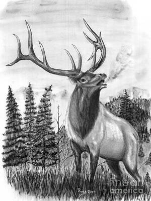 Bull Elk Issuing Challenge Art Print by Russ  Smith