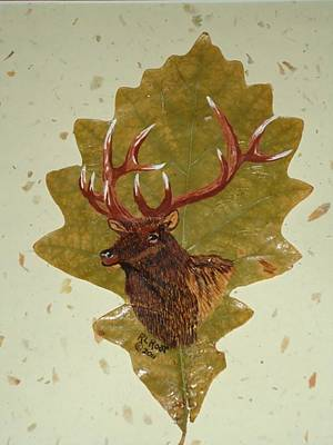 Bull Elk Art Print by Ralph Root