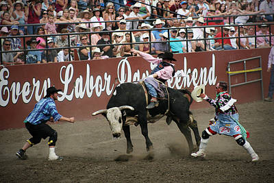 Bull Fighter Photograph - Bull Fighters At Work by Melisa Meyers