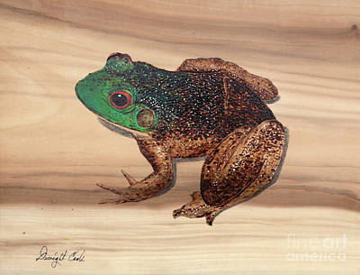 Pyrography Photograph - Bull Frog Art Work by Dwight Cook