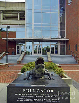 Photograph - Bull Gator 2006 by D Hackett