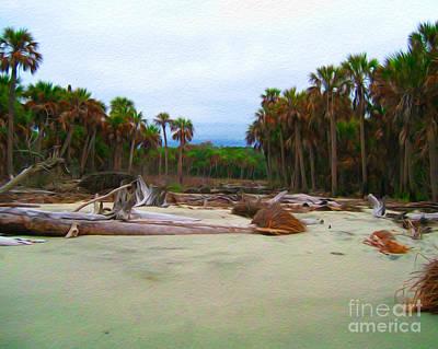 Digital Art - Bull Island by Joseph Re