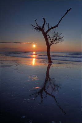 Photograph - Bull Island Sunrise by Harry B Brown