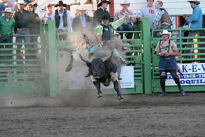 Photograph - Bull It Still by Liz Marr