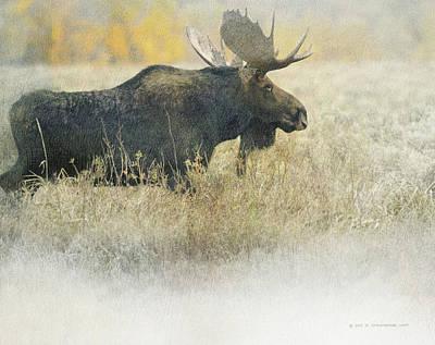 Teton Digital Art - Bull Moose Autumn Meadow by R christopher Vest