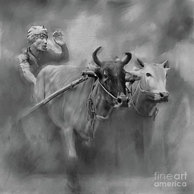Bull Race 03 Original by Gull G