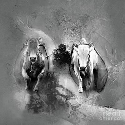 Bull Race 3321 Original