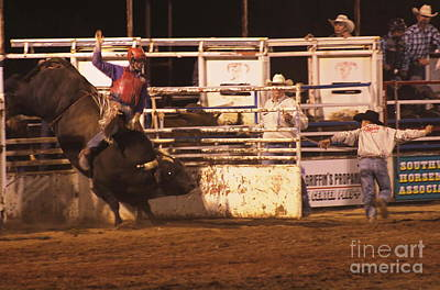 Photograph - Bull Riding 2 by Natalie Ortiz