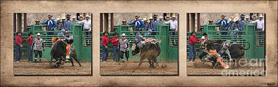 Working Cowboy Photograph - Bull Riding Triptych by Priscilla Burgers