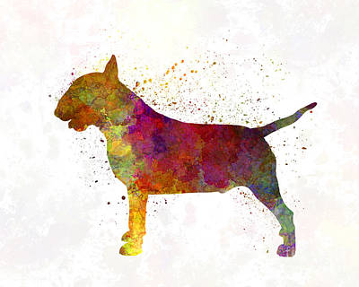English Bull Dog Painting - Bull Terrier In Watercolor by Pablo Romero