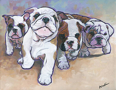 Bulldog Puppies Original