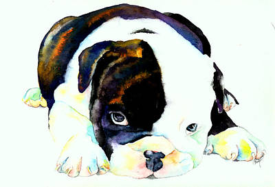 English Bulldog Painting - Bulldog Puppy by Christy  Freeman